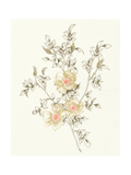 Flowers on White II Poster by Wild Apple Portfolio