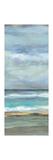 Seashore III Prints by Silvia Vassileva