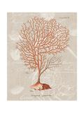 Gorgonia Granulata on Linen Prints by Wild Apple Portfolio