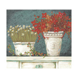 Floral Still-Life Prints by Jo Moulton
