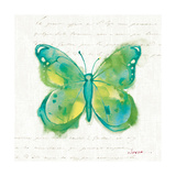 Birdsong Garden Butterfly II Posters by Shirley Novak