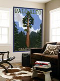 Palo Alto, California - California Redwoods Wall Mural by  Lantern Press