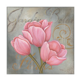 Jardine Tulips Posters by Kim Lewis