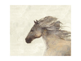 Into the Wind Ivory Premium Giclee Print by Albena Hristova