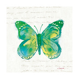 Birdsong Garden Butterfly I Prints by Shirley Novak