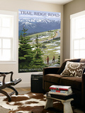 Trail Ridge Road - Rocky Mountain National Park Wall Mural by  Lantern Press