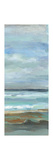 Seashore IV Poster by Silvia Vassileva