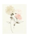 Flowers on White IV Print by Wild Apple Portfolio