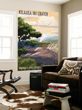 Kilauea Iki Crater, Hawaii Volcanoes National Park Wall Mural by  Lantern Press