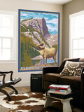 Big Horn Sheep, Rocky Mountain National Park Wall Mural by  Lantern Press