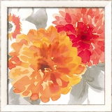Peach Flower II Framed Giclee Print by Sandra Jacobs