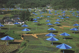 Blue Umbrellas-Ibaraki, Japan Site Collectable Print by Javacheff Christo