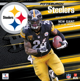Pittsburgh Steelers - 2016 Wall Calendar Calendars