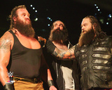 The Wyatt Family 2015 Action Photo