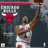 Chicago Bulls - 2016 Wall Calendar Calendars