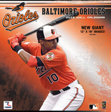 Baltimore Orioles - 2016 Wall Calendar Calendars