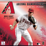 Arizona Diamondbacks - 2016 Wall Calendar Calendars