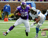 Adrian Peterson 2015 Action Photo