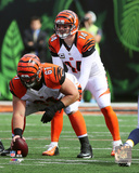 Andy Dalton 2015 Action Photo