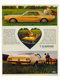 1967 The Call of Mustang Art