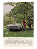 1962 Thunderbird Spell Prints