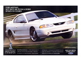 1996 Mustang-Not Since Mr. Ed Affiches