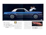 1964 Mustang - Vinyl Roof Prints