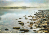 Stillness Print by Dianne Poinski