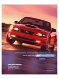 2002 Mustang-No Boundaries Kunstdrucke