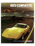 1973 Corvette - to See the Usa Affischer