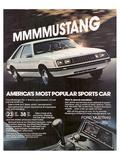 1981 Mustang - Most Popular Art
