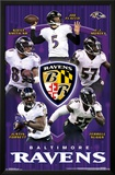 Baltimore Ravens - Team2015 Posters