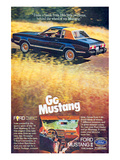 1978 Mustang - I Take a Break Print
