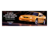 1995 Mustang - Day it Was Born Poster