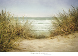 Sea Grasses 1 Poster by Dianne Poinski