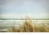 Sea Grasses 2 Prints by Dianne Poinski