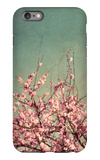 Springtime II iPhone 6 Plus Case by Susan Bryant