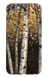 Shimmering Birches 2 iPhone 6 Plus Case by Arnie Fisk