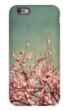 Springtime II iPhone 6s Plus Case by Susan Bryant