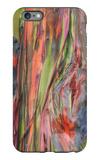 Rainbow Eucalyptus Detail, Kauai iPhone 6 Plus Case by Vincent James