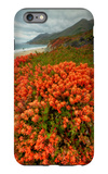 Summer Morning Coastal Color iPhone 6s Plus Case by Vincent James