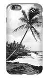 Hawaii - Palms along the Beach iPhone 6 Plus Case by  Lantern Press