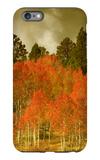 Portrait of Aspens in Autumn iPhone 6s Plus Case by Vincent James