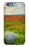 Wildflowers near Lancaster, California iPhone 6s Plus Case by Vincent James