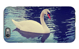 Mute Swan, Cygnus Olor, Single Bird on Dark Water Toned with a Retro Vintage Instagram Filter Effec iPhone 6 Plus Case by  graphicphoto