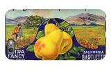 Bancroft, California, Mt. Diablo Fruit Farm Brand Pear Label iPhone 6 Plus Case by  Lantern Press
