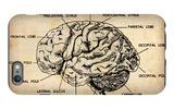 Vintage Brain Map Anatomy iPhone 6s Plus Case by  NaxArt