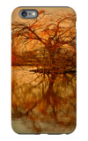 Golden Tree iPhone 6 Plus Case by Philippe Sainte-Laudy