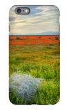 Wildflowers near Lancaster, California iPhone 6 Plus Case by Vincent James