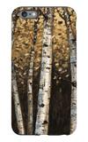 Shimmering Birches 2 iPhone 6s Plus Case by Arnie Fisk
